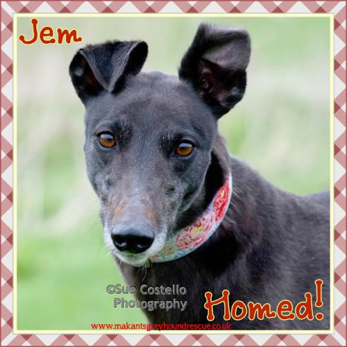Jem homed 22.5.17