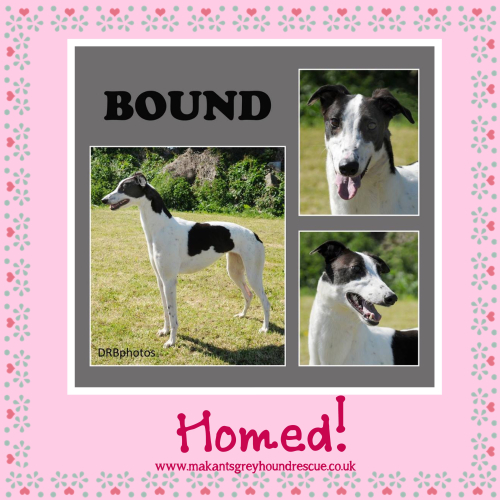 Bound homed 23.7.17