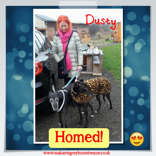 Dusty homed 6.12.16 with Dennis and Nicola McKenzie