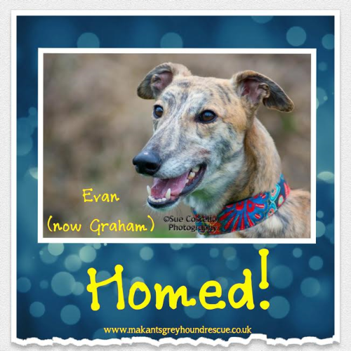 Evan now Graham homed 23.4.17 was also William