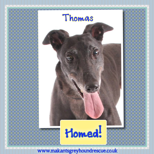 Thomas homed 19.2.18