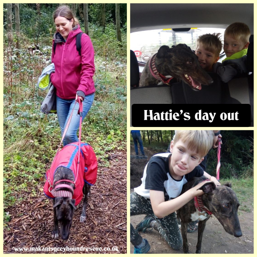 Hatties day out collage