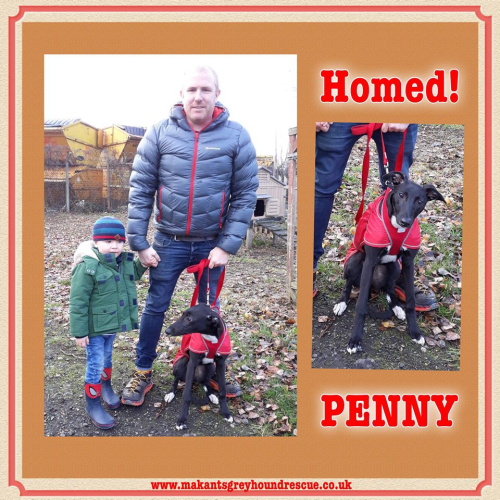 Penny homed 24.11.18