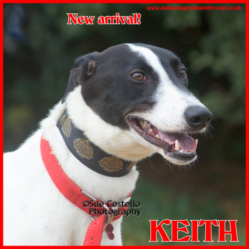 Keith new arrival for fb 16.7.18