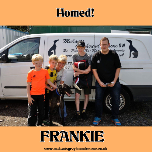 Frankie homed 11.8.18 pic C Tang