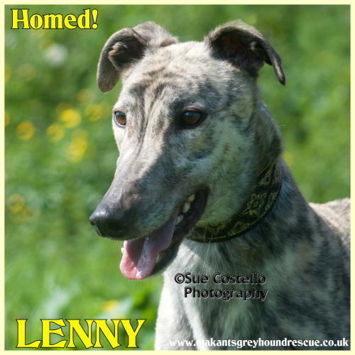 Lenny homed fb 17.9.18#