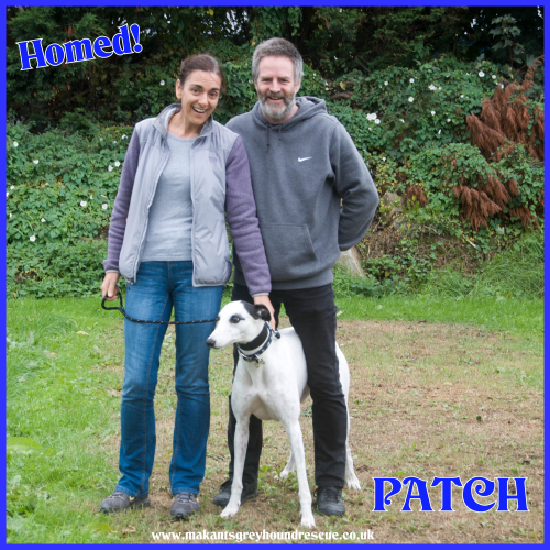 PaTCH HOMED 26.9.18 FOR FB