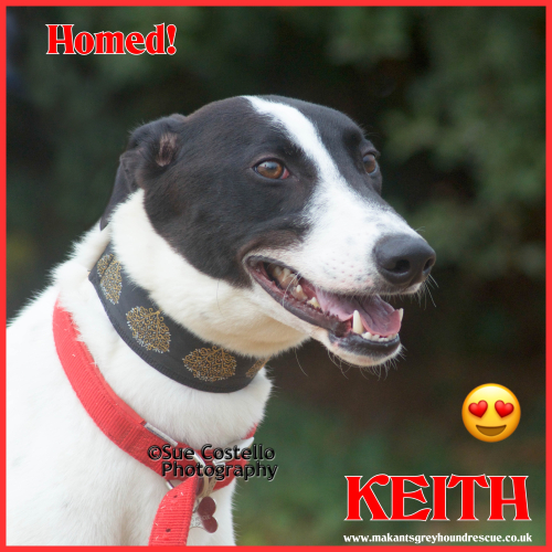 LAID BACK kEITH HOMED FOR FB 26.9.18