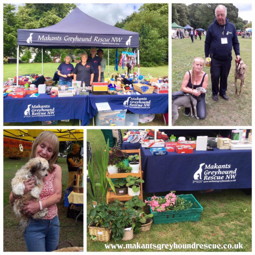 Collage worsley green event 14.7.19